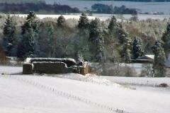 snow980x280